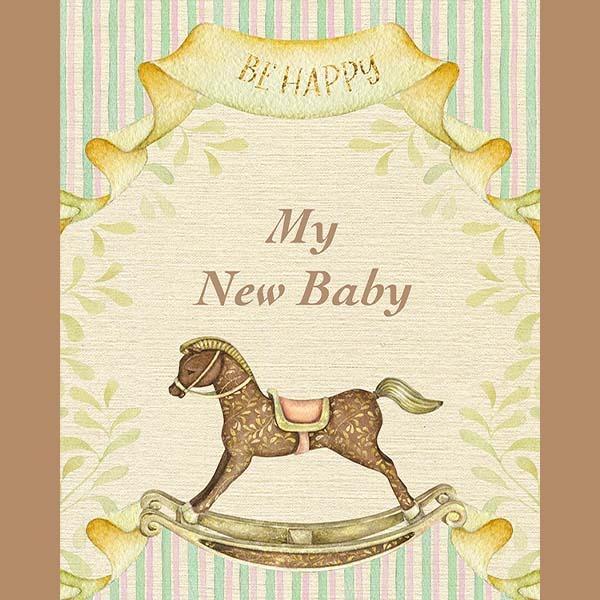 pregnancy journal plr