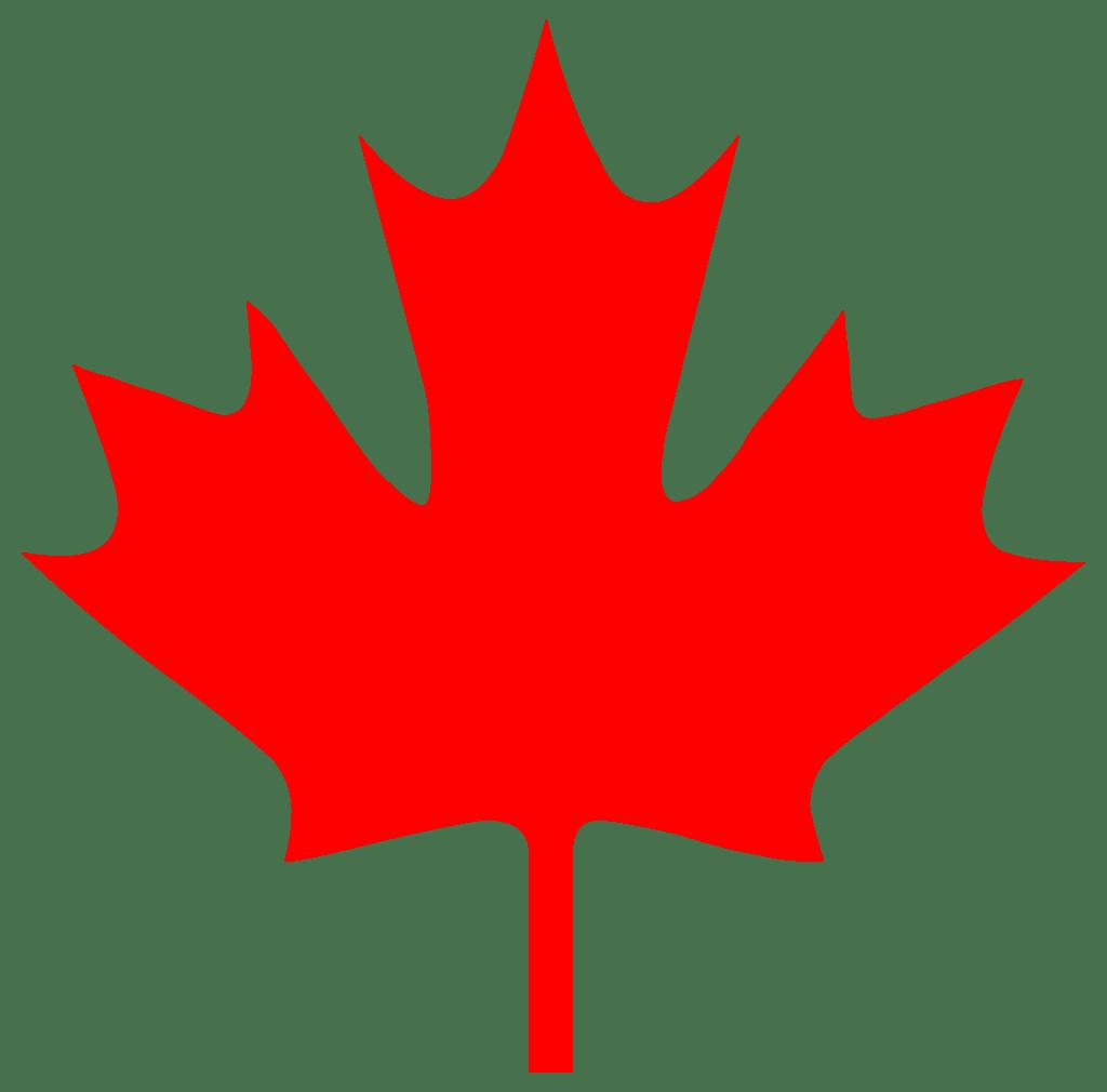 small canada maple leaf